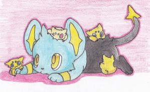 Shinx and Joltik