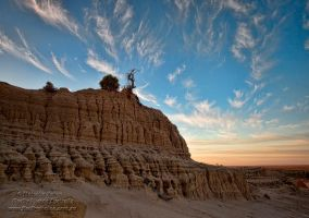 King of the Mungo by FireflyPhotosAust