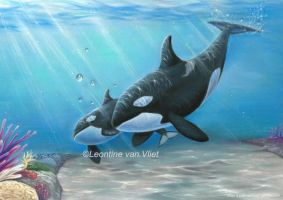 Orcas! Pastel pencil drawing by Tinesdierportretten