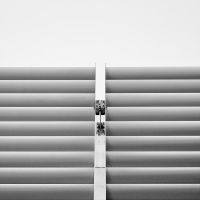 Lines by LuxLucie