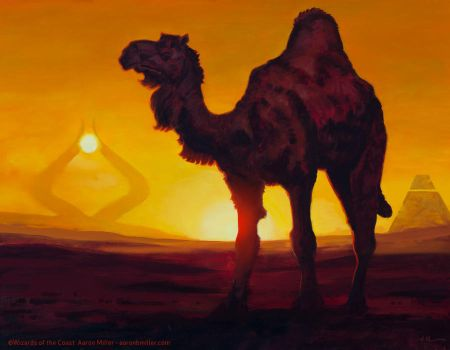 Solitary Camel by AaronMiller