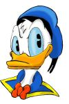 donald duck by land3