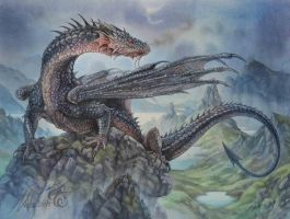 Hebridean Black Dragon by Fabeltier