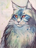 Maine Coon Watercolour by LilidraArt