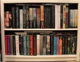 Bookcase by Shadows-r-Light