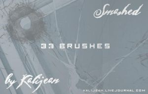 Smashed: Broken Glass Brushes by kalijean