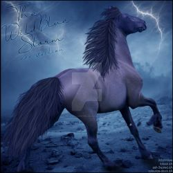HEE Horse Artwork - The Wild Blue Storm by WildWillowHEE
