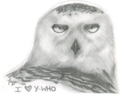 Owl by DiPorcelainPinUp