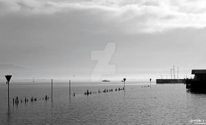 Bodensee III. by DominikJPhotography