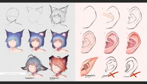 Human vs Beast ears by kawacy