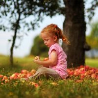 little ginger on apples by nnoik