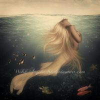 *mermaid* by BellaDreamArt