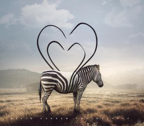 Striped Affection by kevron2001