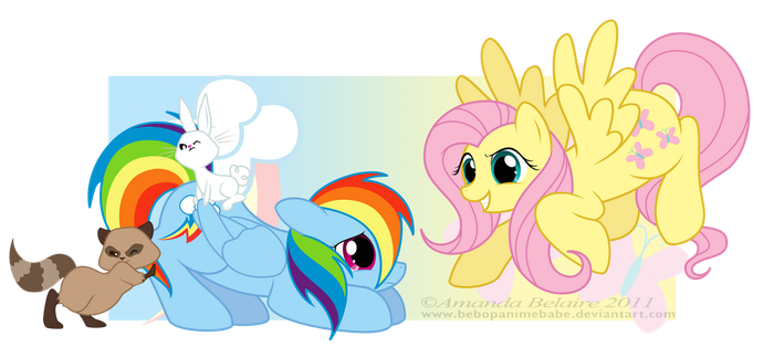 Fluttershy and Rainbow Dash Reversed by ImmortalTanuki