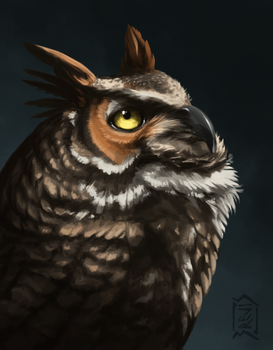 Owl by Brevis--art