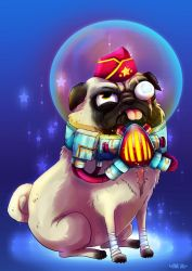 Colonel Bug the pug by Atomik-Goku