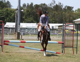 STOCK Showjumping 412 by aussiegal7