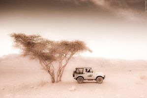 Savanna outback by geostant