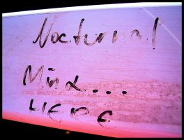 Nocturnal Mind by x-louisee-richo-x