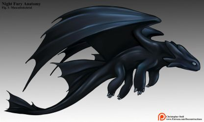 Night Fury Anatomy Gif by Christopher-Stoll