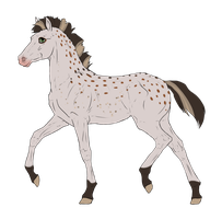 N3187 Padro Foal Design by casinuba