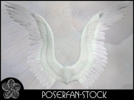 Angel Wings 002 by poserfan-stock