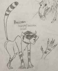 CDC 2018 day 26 - Baccoon by EVanimations