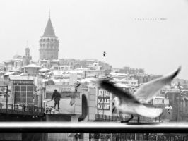 an ordinary snowy day by oscarsnapshotter