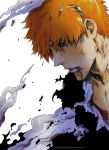 BLEACH: The End (spoiler) by Sideburn004