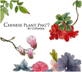 Chinese Plant Png by CuPanda
