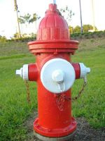Red-and-White Fire Hydrant by richardxthripp