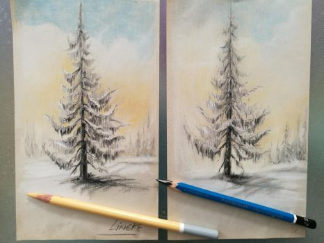 Pine trees in graphite (and a little pastel) by Lineke-Lijn