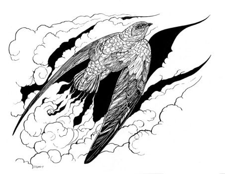 Inktober Day 1 - Swift by windfalcon