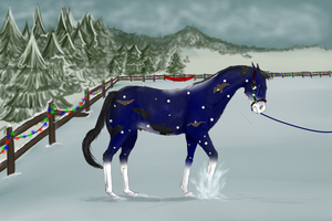 At The Auraleyki Winter Show by TLAFan2
