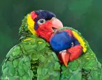Rainbow Lorikeets by MugiwaraWolf