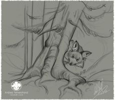 Fox sketch and VIDEO by Noukah
