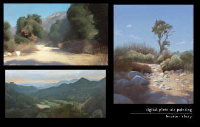 Digital Plein-Air Painting - Collection 2 by HoustonSharp