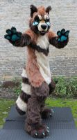 Koji The Tanuki by TheKareliaFursuits