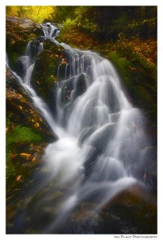 Wedge Brook Cascades by Ian-Plant