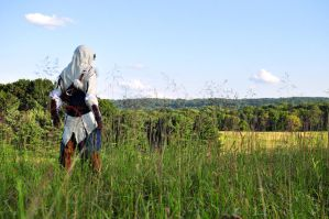 Assassins Creed III: Connor Kenway by Winged-Mouz