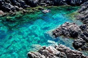Green Water In Natural Pool by IElioI