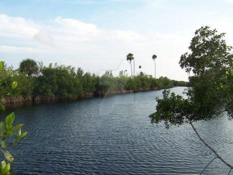 The Everglades by Nirvanamanic