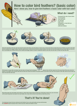 How to color bird feathers by LimitlessEndeavours