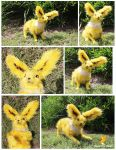 Jolteon by Sweet-Fox-Wings
