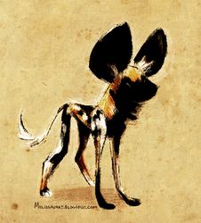 Daily Design: African Wild Dog by sketchinthoughts