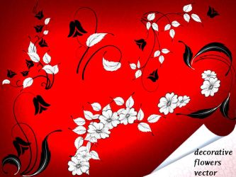 Decorative Flowers Vector by roula33