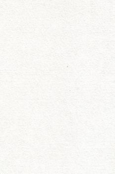 WFS 002- Watercolor Paper by WhiteFox-stock