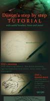 Step By Step Tutorial / Hints Brushes Explanations by Diivon