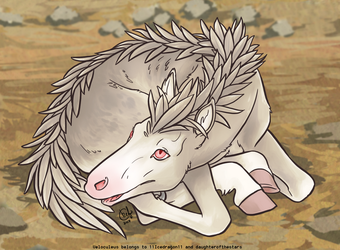 Velo Newborn - Albino by daughterofthestars