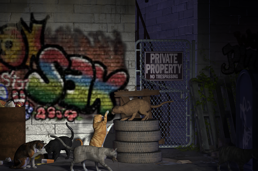 Alley Cats by JohnParaiso